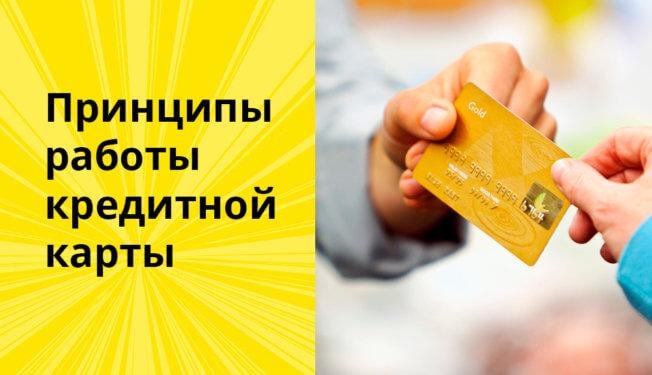 Принципы работы кредитной карты